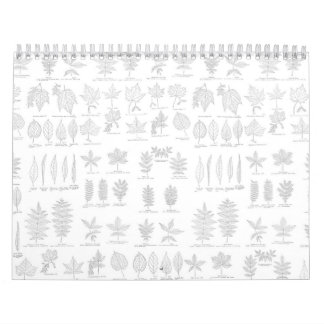 Botanical Print Hand Drawn Gray Sketch Leaf Calendar