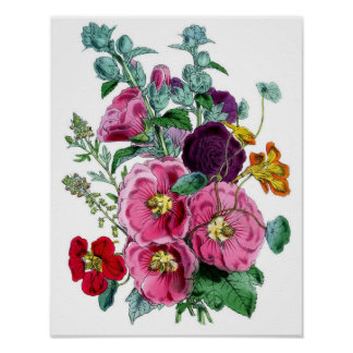 Botanical Print - Hollyhocks & Roses