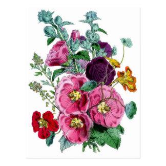 Botanical Print - Hollyhocks & Roses Postcard