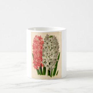 Botanical Print - Hyacinth Coffee Mug