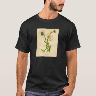 Botanical Print Ox-Eye Daisy Leucanthemum vulgare T-Shirt