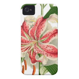 Botanical Print Red Tiger Lily lancifolium rubrum Case-Mate iPhone 4 Case