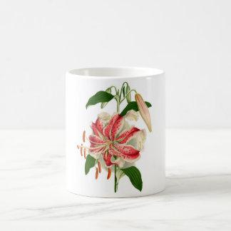 Botanical Print Red Tiger Lily lancifolium rubrum Coffee Mug