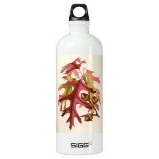 Botanical Print - Scarlet Oak (quercus coccinea) Water Bottle