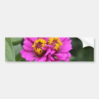 Botanical Series Bumper Sticker