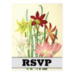 [ Thumbnail: Botanical Style / Floral / Flowers RSVP Postcard ]