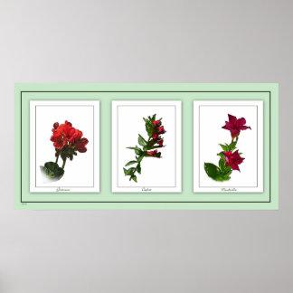 Botanical Trio Floral Poster 2