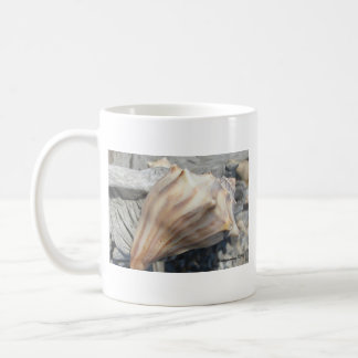 Botany Bay, Edisto Island seashell mug