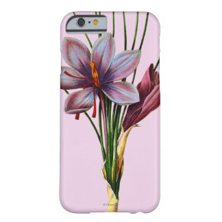 Botany: Saffron Barely There iPhone 6 Case