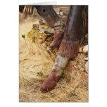 Botas de vaquero 2 tarjeta