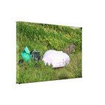 Bote en la hierba impresión en lona
