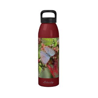 Botella azul marina de la mariposa botella de agua reutilizable