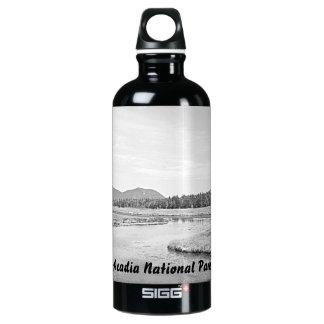 Botella baja del bosquejo del pantano del puerto