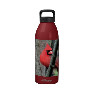 Botella cardinal roja de la libertad botella de agua