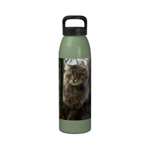 Botella de agua animal de pelo largo del mascota d