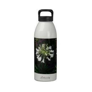 Botella de agua blanca del Agapanthus
