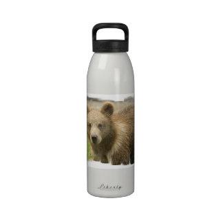 Botella de agua de Cub del grisáceo