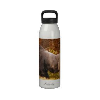 Botella de agua de la foto del gorila del Silverba