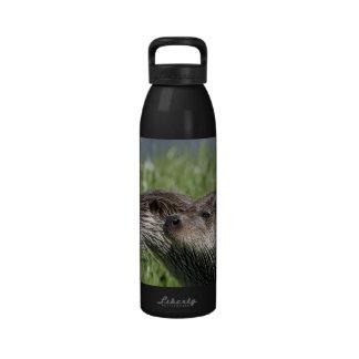Botella de agua de la libertad de las nutrias