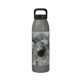 Botella de agua de la rama del pino Nevado