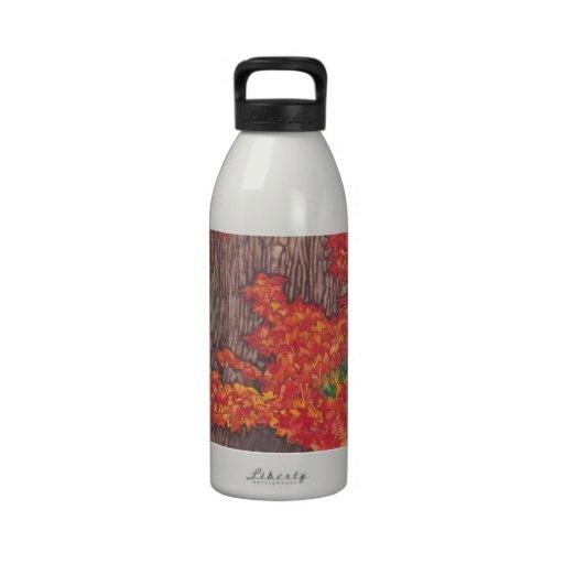 Botella de agua de las hojas de otoño