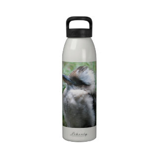 Botella de agua de risa de Kookaburra