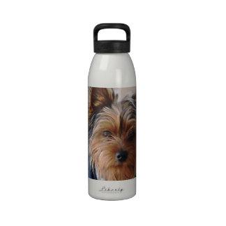 Botella de agua de Yorkie Terrier