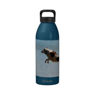 Botella de agua del border collie del salto del mu