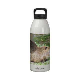 Botella de agua del Coypu