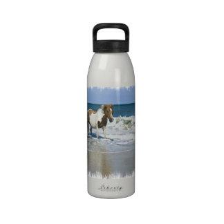 Botella de agua del diseño de la nadada del caball