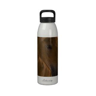 Botella de agua del diseño del caballo de la casta