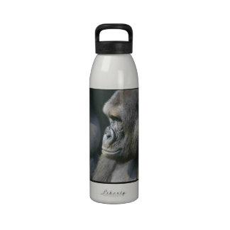 Botella de agua del gorila de montaña