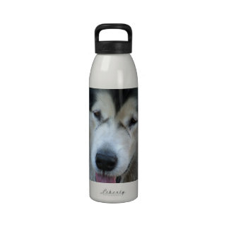 Botella de agua del Malamute del lobo