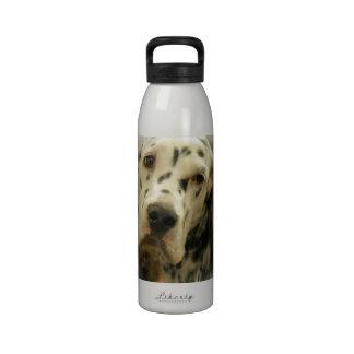 Botella de agua del organismo inglés
