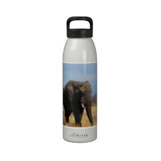 Botella de agua del Pachyderm