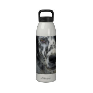 Botella de agua del perro del organismo inglés