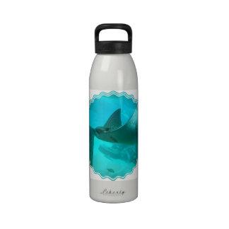 Botella de agua del rayo de Manta