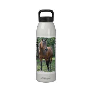 Botella de agua excelente del caballo de la bahía