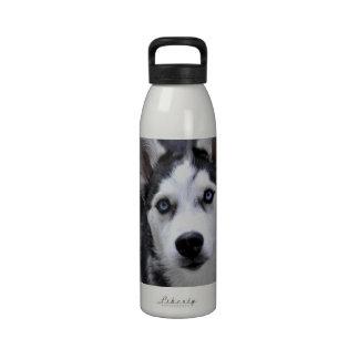 Botella de agua fornida del perrito
