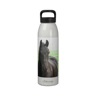 Botella de agua frisia negra del caballo