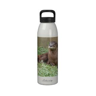 Botella de agua linda de la nutria
