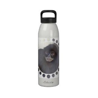 Botella de agua negra del mono de araña