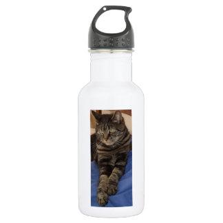 Botella de agua real de Dave