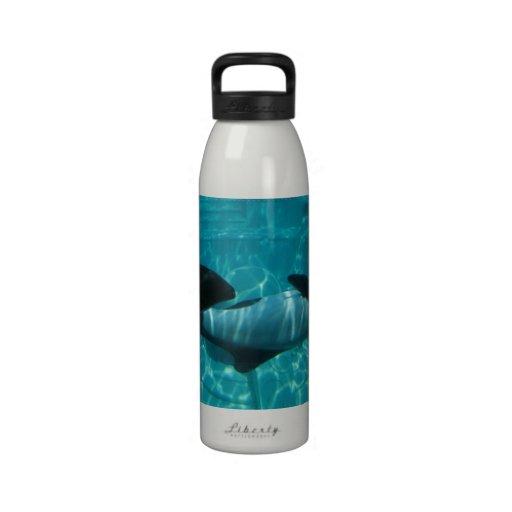 Botella de agua subacuática de las ballenas