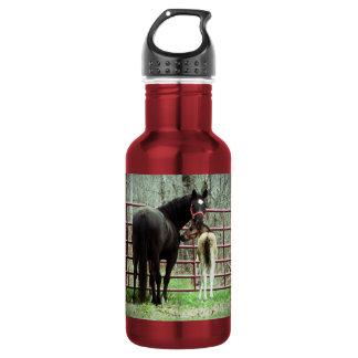 Botella de agua, yegua y potra por la puerta