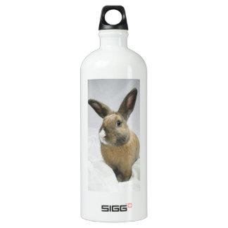 Botella de la bebida del conejo de conejito de