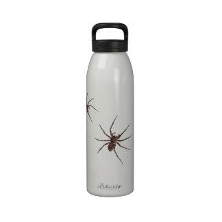 Botella de las arañas de lobo botellas de beber