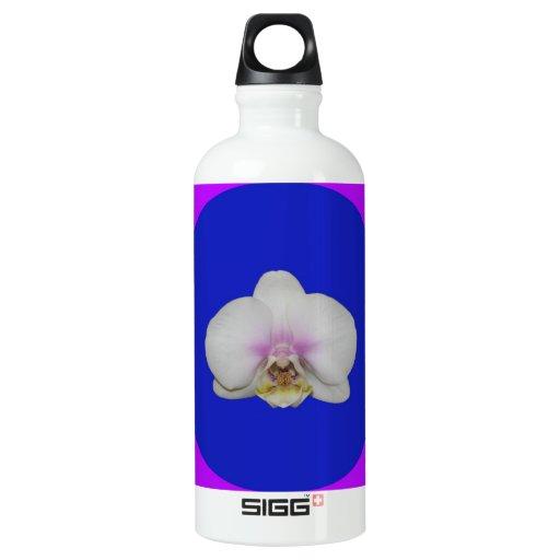 Botella, orquídea de polilla blanca, círculo azul,