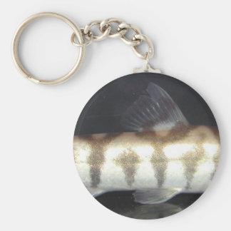 Botia Almorhae Basic Round Button Keychain