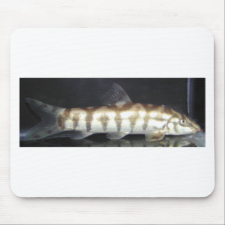 Botia Almorhae Mouse Pads